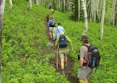 Bella Vista hiking 01 400x284 - Steamboat