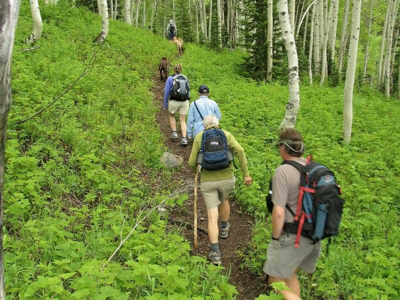 Bella Vista hiking 01 - Hiking