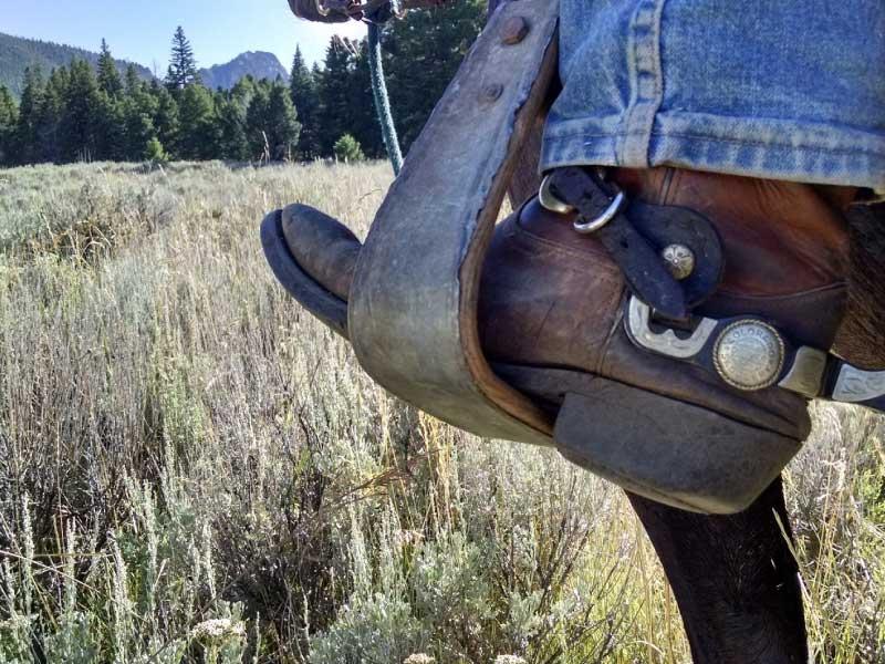 Bella Vista horse back riding 01 - Horseback Riding